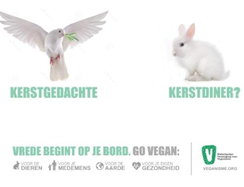 Crowdfunding voor abri postercampagne kerst