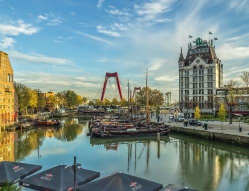 4 Vegan hotspots in Rotterdam
