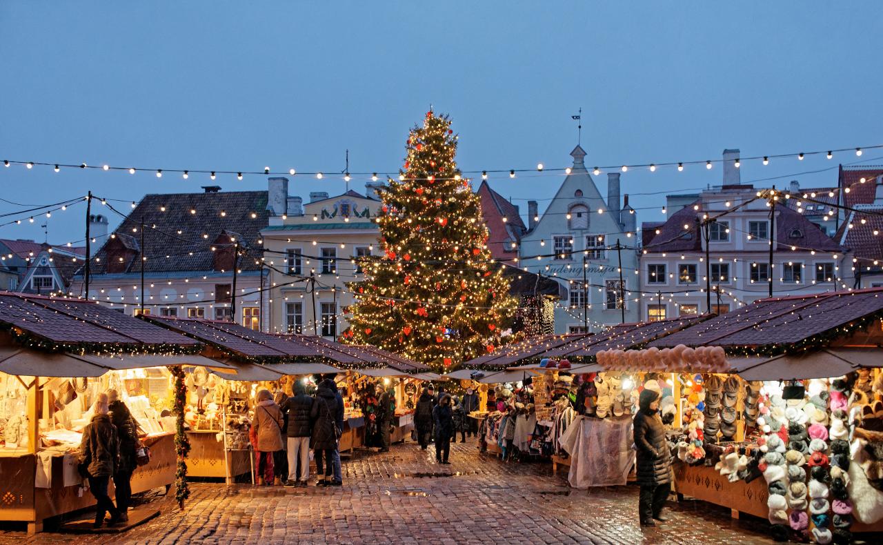 Vegan kerstmarkten 2018