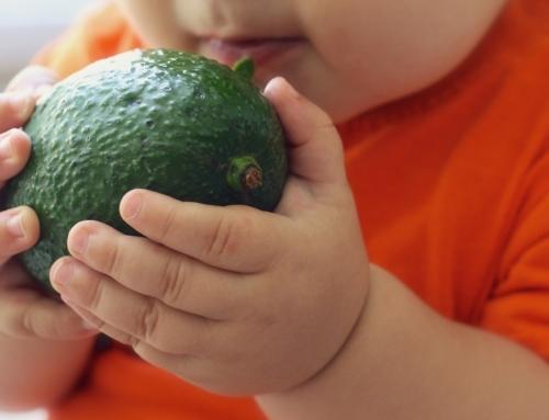 Veroordeel onverantwoorde opvoeding in plaats van veganisme