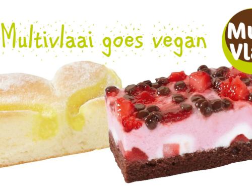 Vegan taart bij Multivlaai