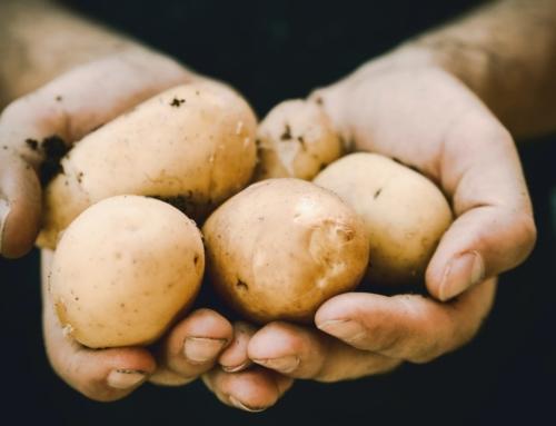Samen helpen we de aardappelboer