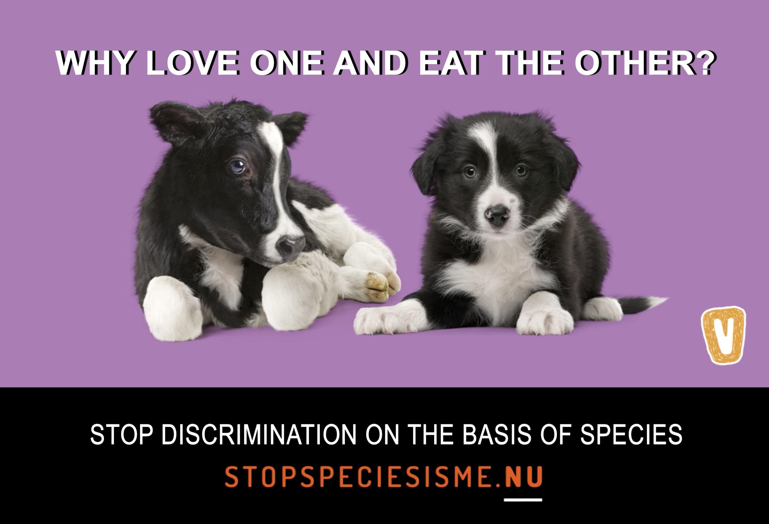 Stop Speciesism