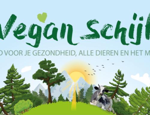 De Vegan Schijf voor een gezond plantaardig voedingspatroon: eindelijk een voedingsschijf voor veganisten!